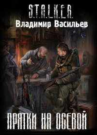 В.Васильев  -  Прятки на осевой
